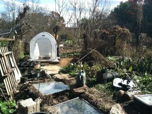 Our winter garden space in progress