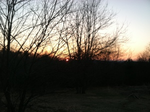 Spring Sunrise!