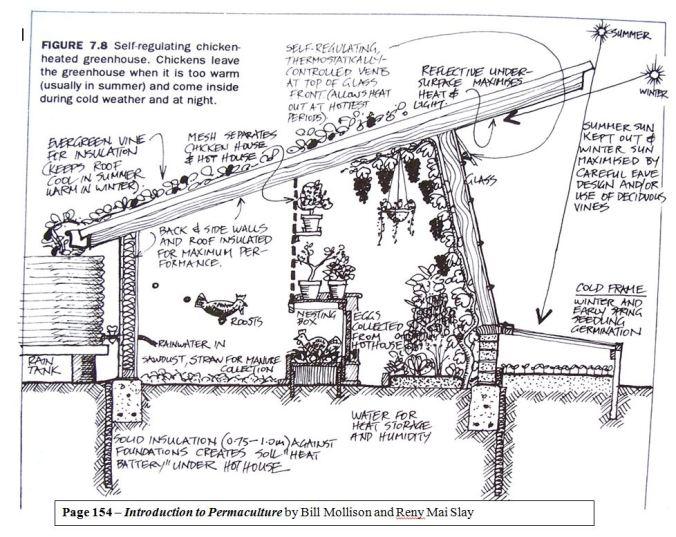 Chicken coop design plan