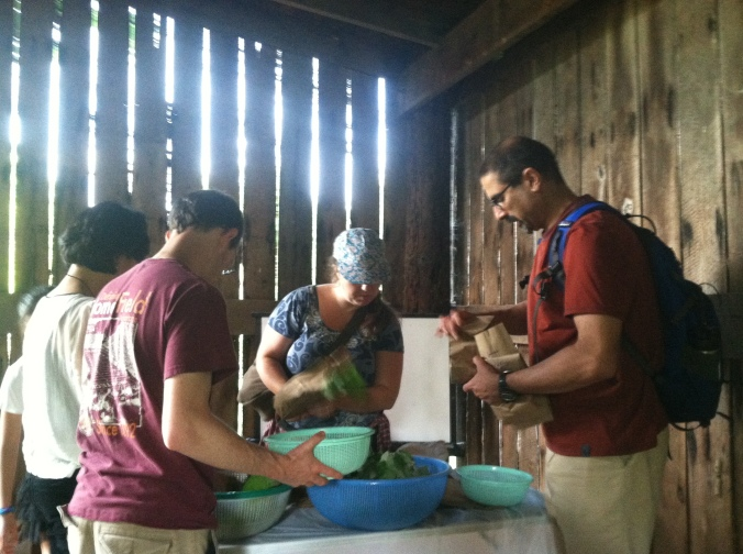 Samuel, Eunyoong, Kama, and Parakh sorting and washing wild vegetables in the barn.