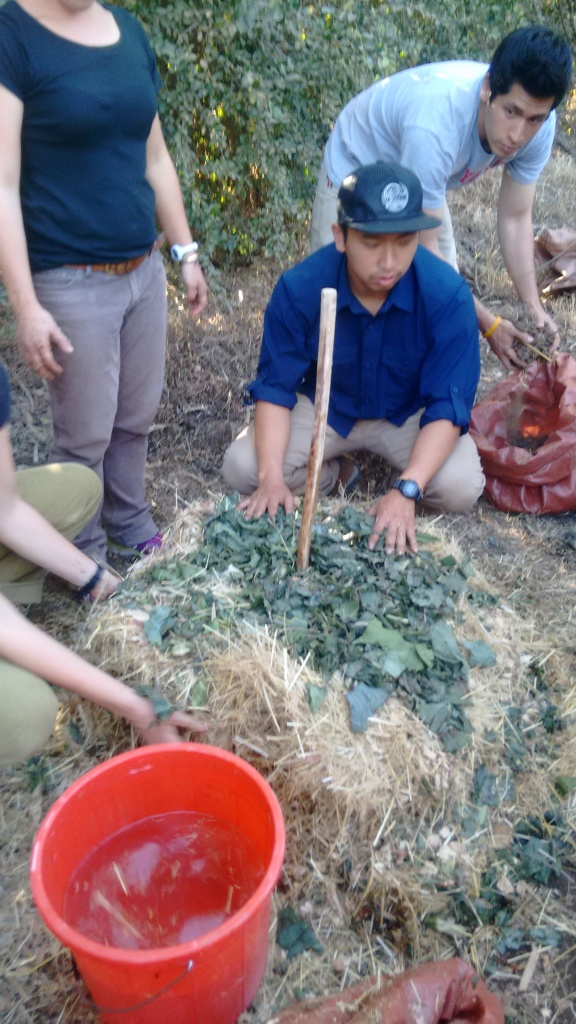 Peace Corps Compost workshop- talk about a Hot Topic!