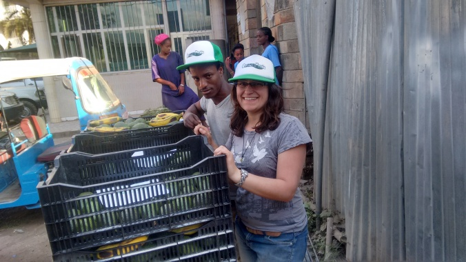 Our first 100 kilo delivery of Ettinger, Pinkerton, and Bacon avocados!